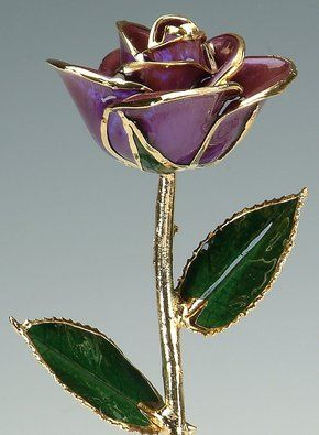 24k Gold Dipped Roses Real Roses Made To Last A Lifetime Steven Singer Jewelers Gold Dipped Rose Gold Dipped 24kt Gold