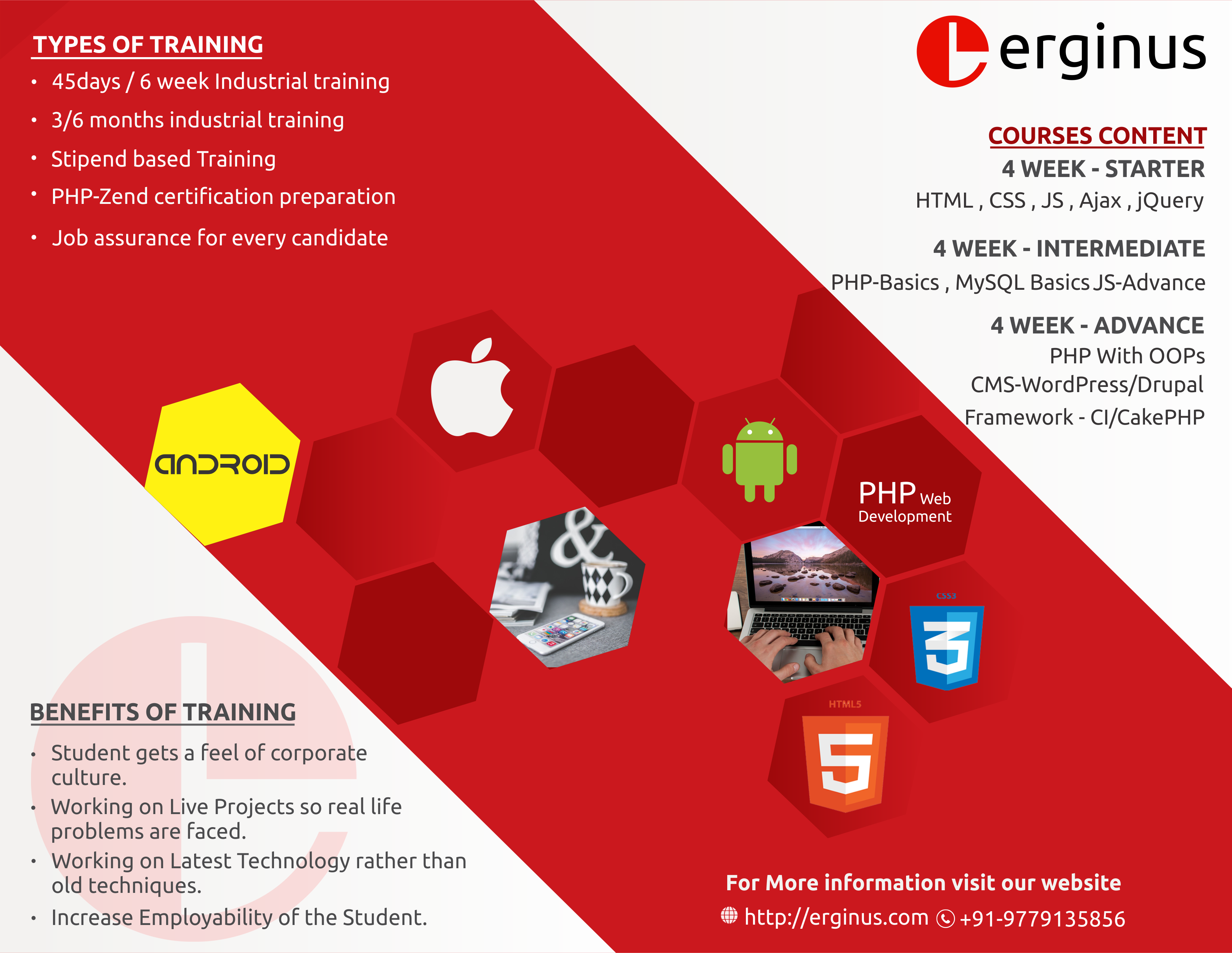 Erginus is the Best industrial Training company in Mohali