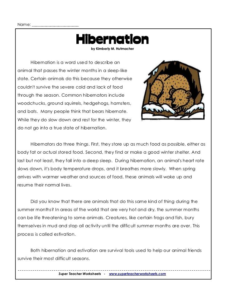spider adaptation worksheet Google Search – Adaptation Worksheet