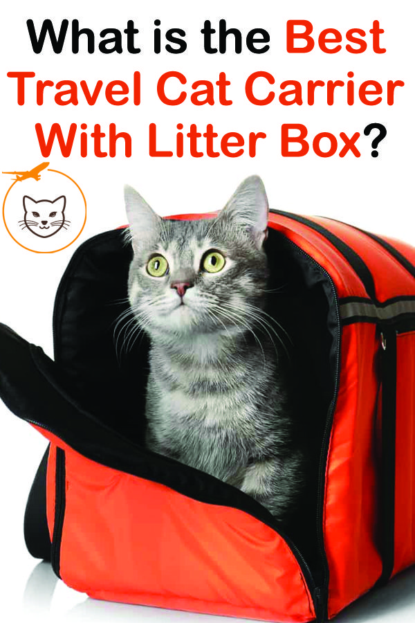5 Best Travel Cat Carrier With Litter Box Cat carrier