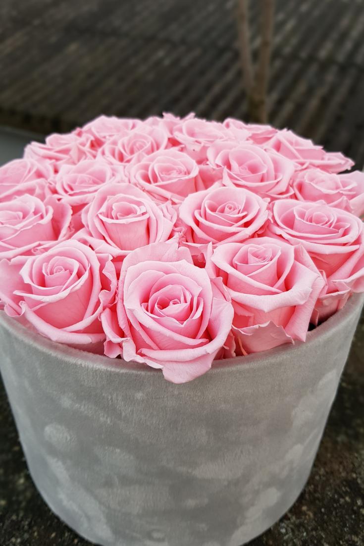 Rosen Box Selber Machen Mit Stabilisierten Rosen Bleibt Die