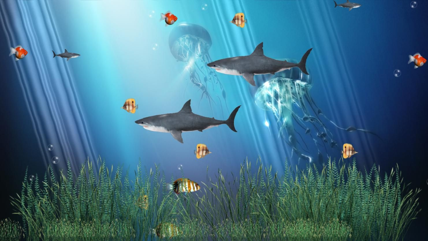 3d Motion Screensavers And Wallpaper Coral Reef Aquarium Animated Wallpaper 1 0 Free Animated Wallpaper Screen Savers Wallpapers Fish Wallpaper