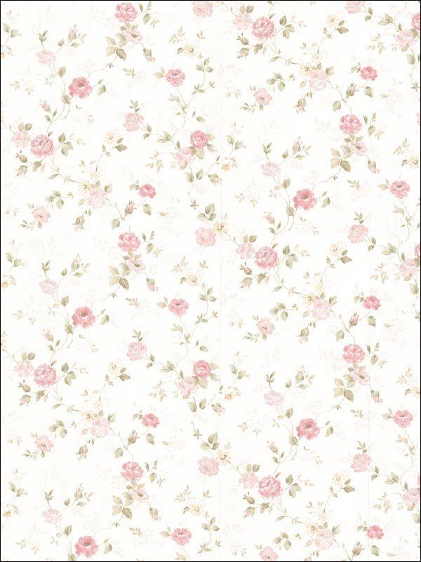 delicado plano de fundo pinterest parede floral parede e moldura floral. Black Bedroom Furniture Sets. Home Design Ideas