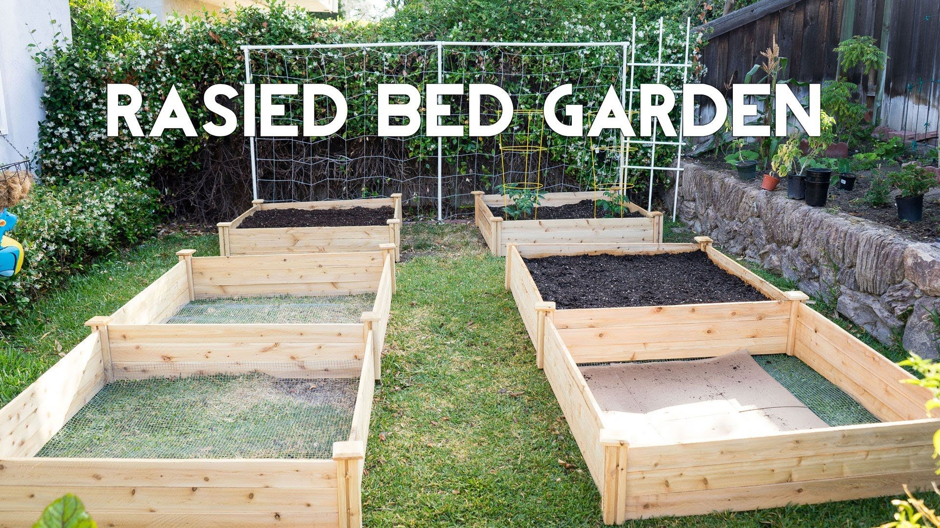 how to start a raised bed garden step by step for beginners as well as advanced gardeners. Black Bedroom Furniture Sets. Home Design Ideas