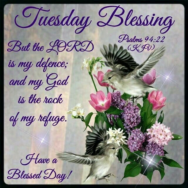 Tuesday Blessing Good Morning Tuesday Morning Blessings Happy Tuesday Morning