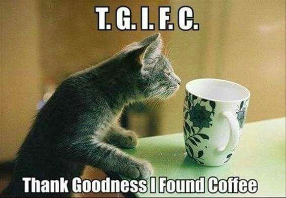 T.G.I.F.C.