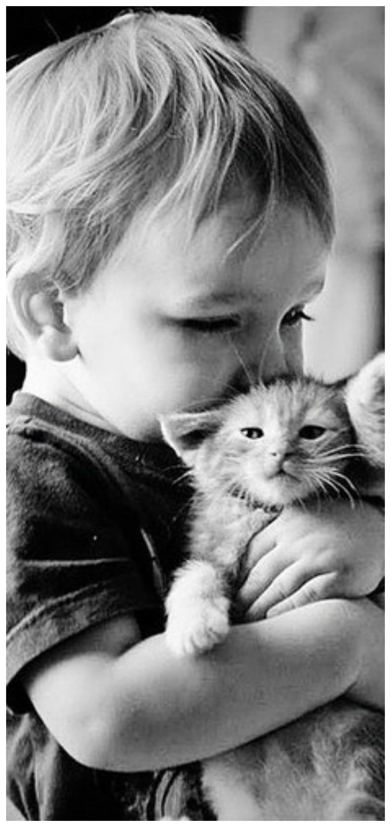 Pin By Tam S Boards On Kids Love Animals Pets Animals