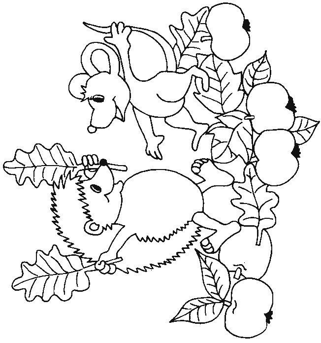 kleurplaten herfst egel