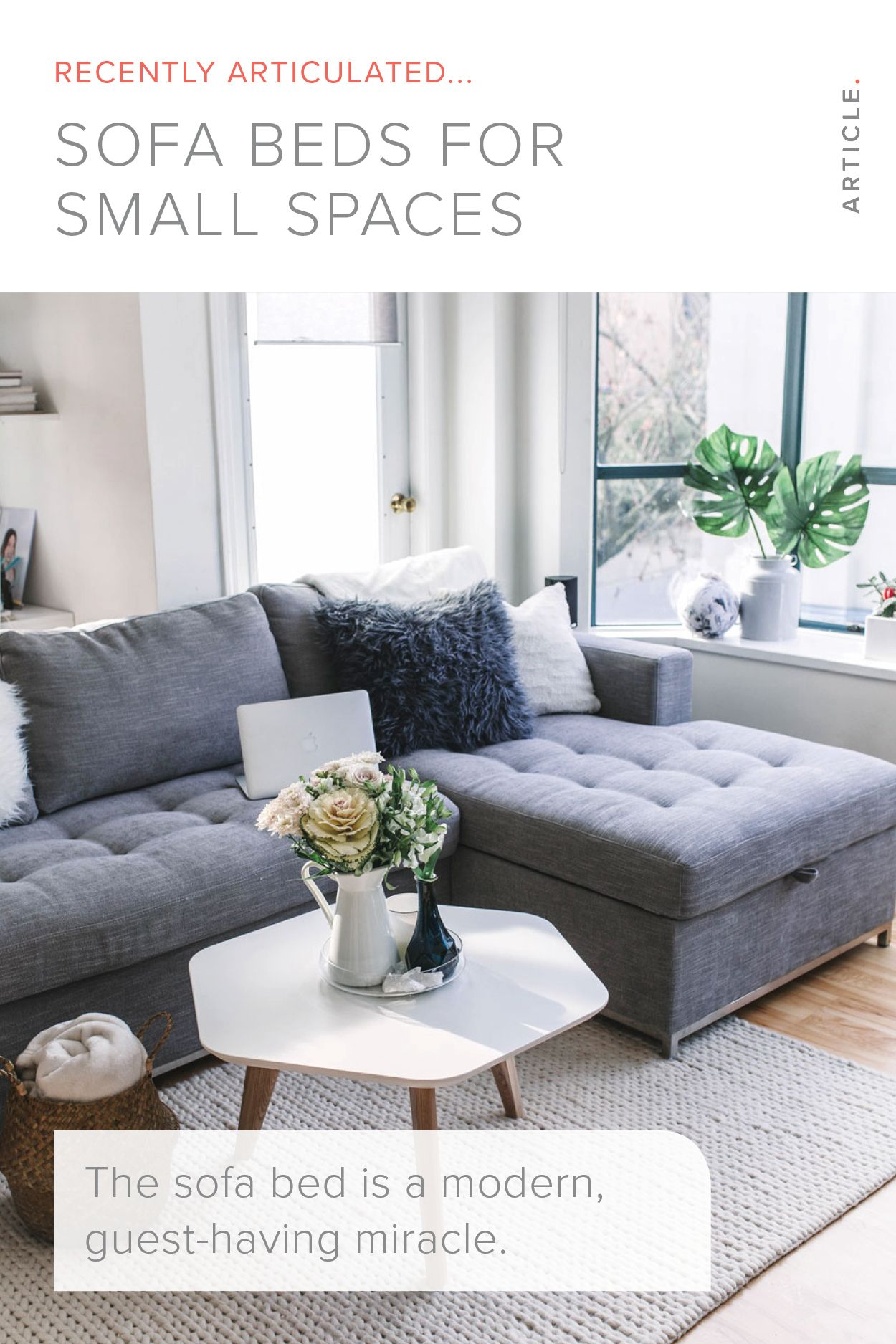 Sofa Beds in Your Small Space   Sofa bed design, Sofas for small ...