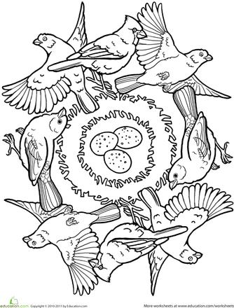 Mandala Kleurplaten Vogels.Bird Mandala Mandala Kleurplaten Kleurplaten En Vogels