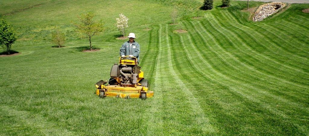 Lawn Maintenance в 2020 г