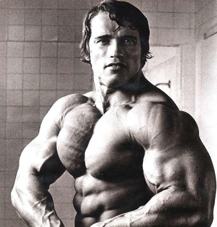 Image detail for -Arnold Schwarzenegger 7 time Mr Olympia, Body of - new arnold blueprint app