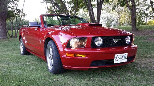 2008 Ford Mustang Gt Convertible Kamloops Bc 0245613967 Once Driven 2008 Ford Mustang Ford Mustang Gt Mustang Gt