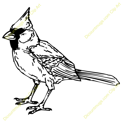 Cardinal Bird Clipart Cardinal Bird Bird Clipart Black And White Bird Carving