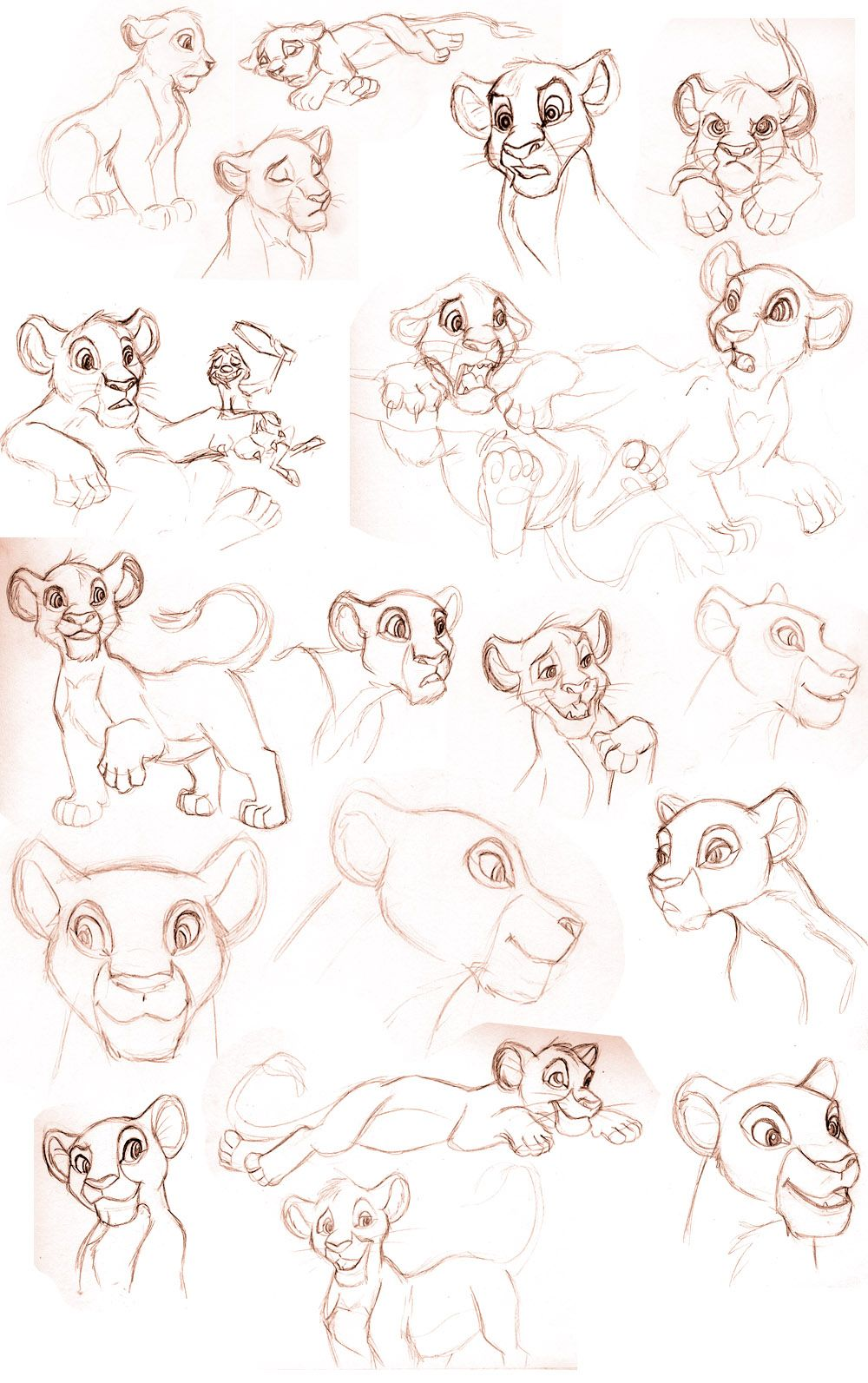 animation sketch illustration disney lion king - Pesquisa Google