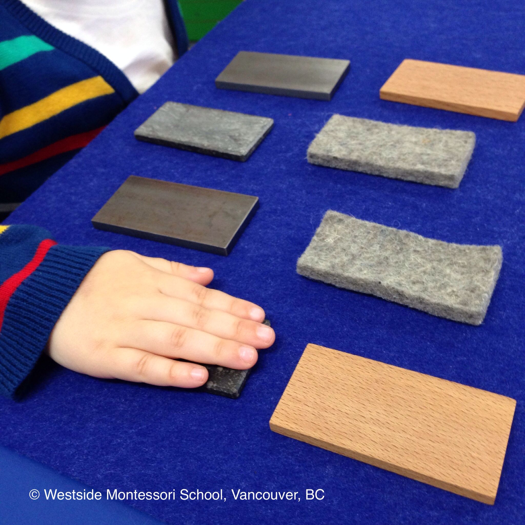 Montessori School of Davenport Inc.