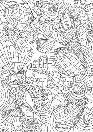 Ocean Life – Shell Pattern   Pinterest   Garabatos y Colorear
