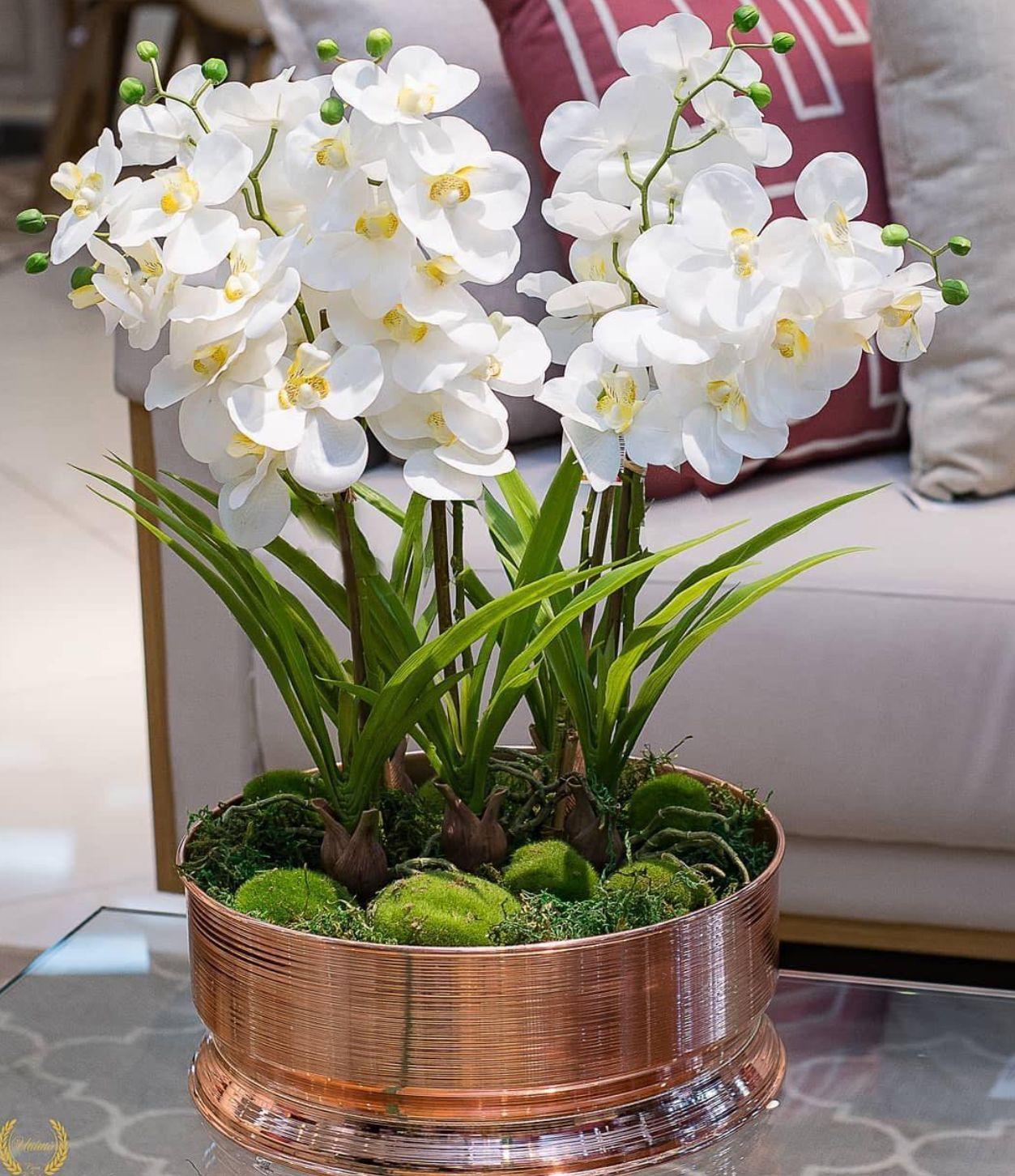 Pin De Tina Menon Em Flowers Arrengement Com Imagens Aranjos