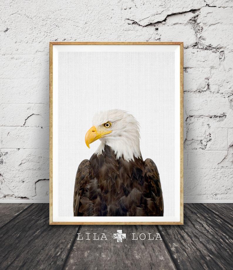 Bald Eagle Print American Eagle Wall Art Poster Printable Digital Download Hawke Boys Room Decor Bird Animal Photography Minimalist Eagle Wall Art Poster Wall Art Wall Art