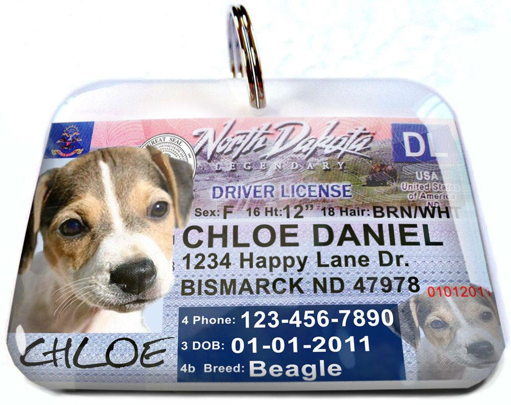 North Dakota Driver License Personalized Custom Id Tags For Dogs And Cats Double Sided Pet Tags By Custompettags On Etsy Https Www Etsy Com Listing Pet Id Tags