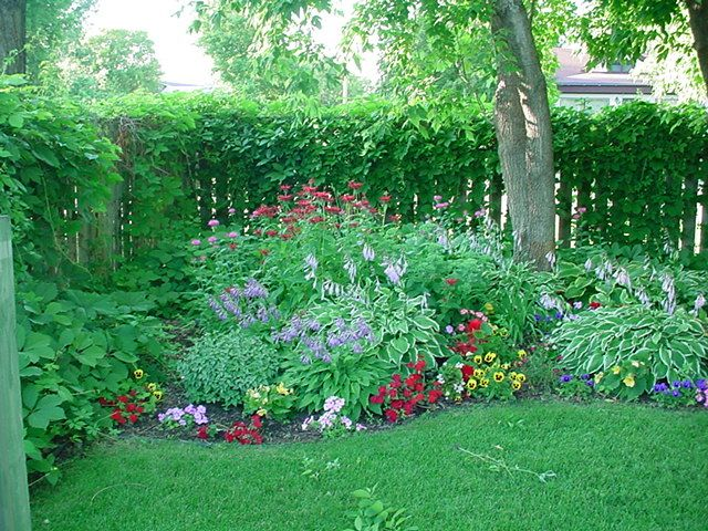 Perennial Shade Garden Bagley landscapes color zone 3