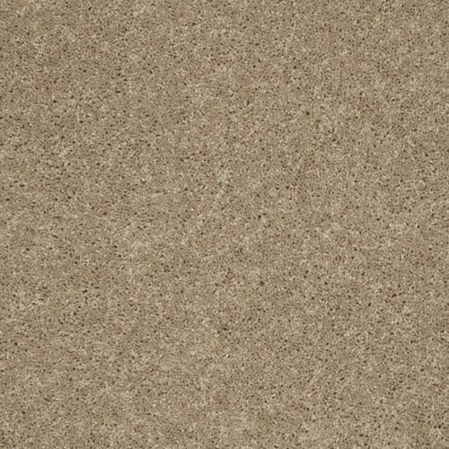 Shaw Bayfield Plush Carpet 12 Ft Wide At Menards Plush Carpet Carpet Samples Buying Carpet