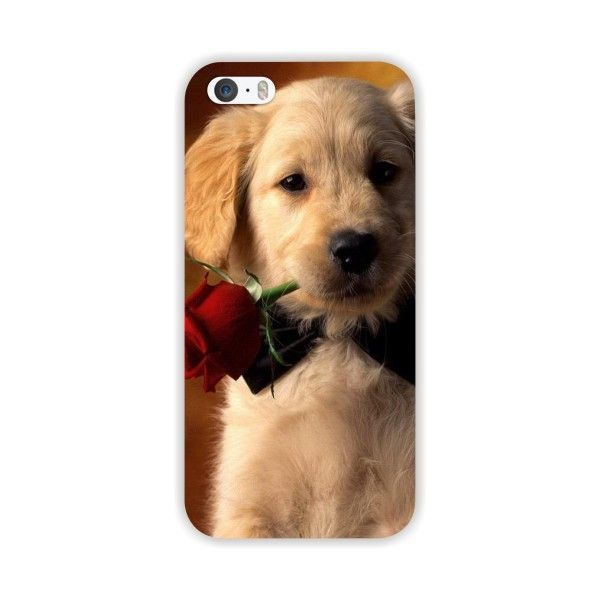 Cute Dog Cases For Apple iPhone 5