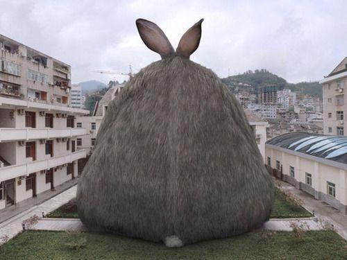 Bunny Rabbits おしゃれまとめの人気アイデア Pinterest April Blunt グラフィックデザインイラスト 動物 うさぎ