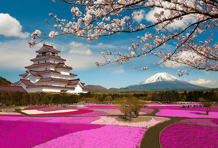 Shop For Spring Season In Japan Wallpapers In Nature Landscapes Theme Wallpapers Custom Printed To Fit Your Wall Japan Landscape Colorful Places Visit Japan