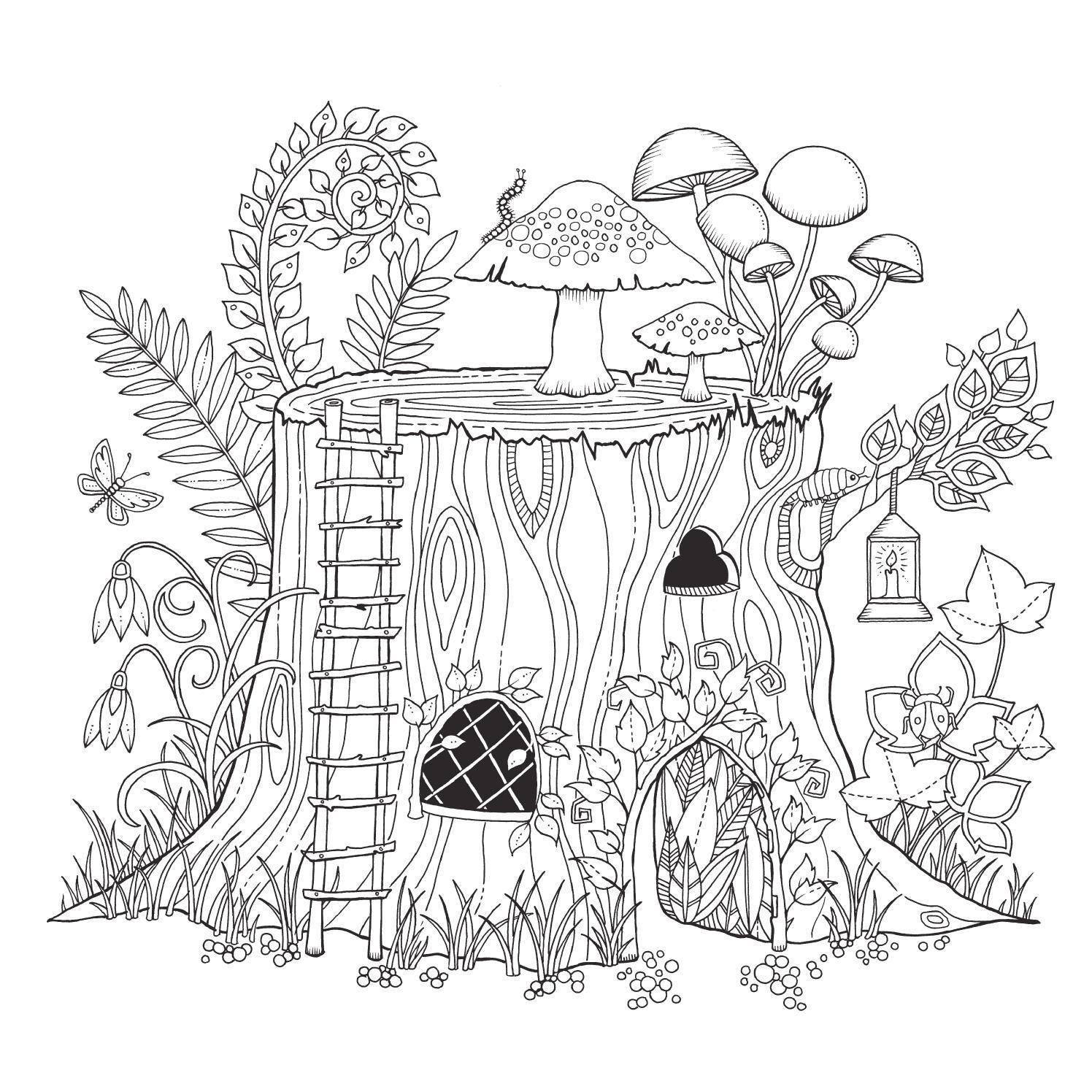 El Bosque Encantado Mtm Editores Ilustraciones Dibujos