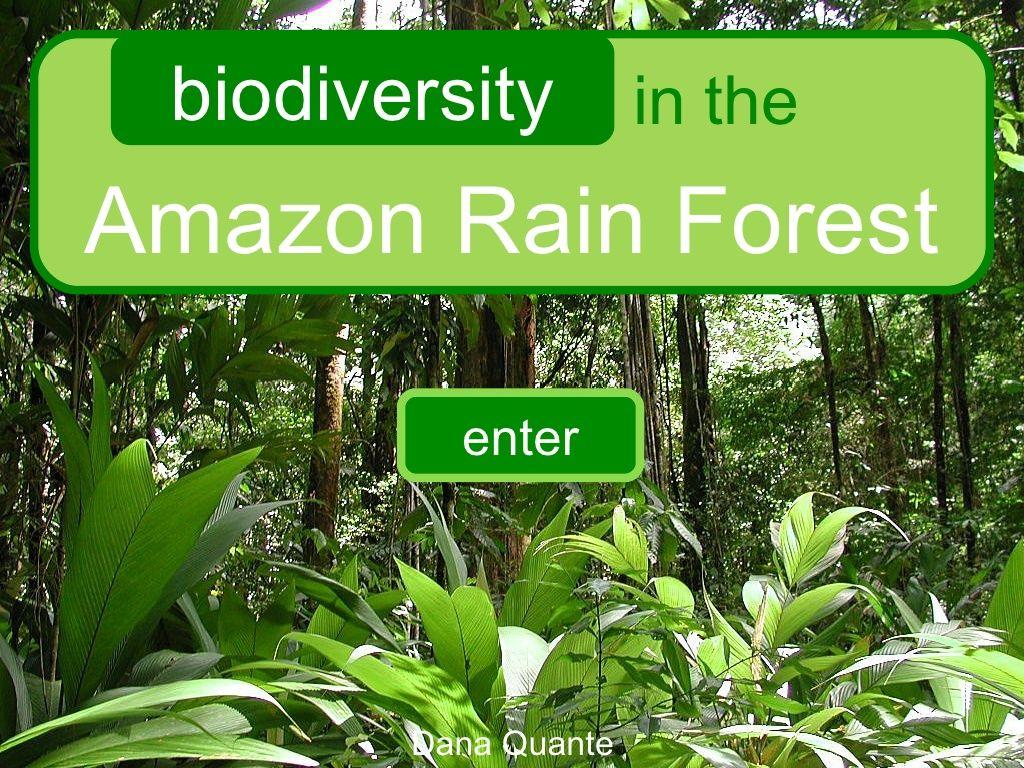 Rainforest Interactive For 3rd Grade By Dana Quante Via