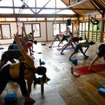 Radiantly Alive Yoga Studio