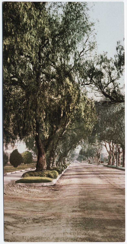 Marengo avenue, Pasadena, CA   Pasadena!   Pinterest
