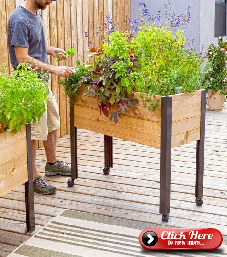 Mobiles Hochbeet Auf Rollen Fur Terrasse Und Balkon With Images Diy Raised Garden Raised Garden Raised Garden Beds