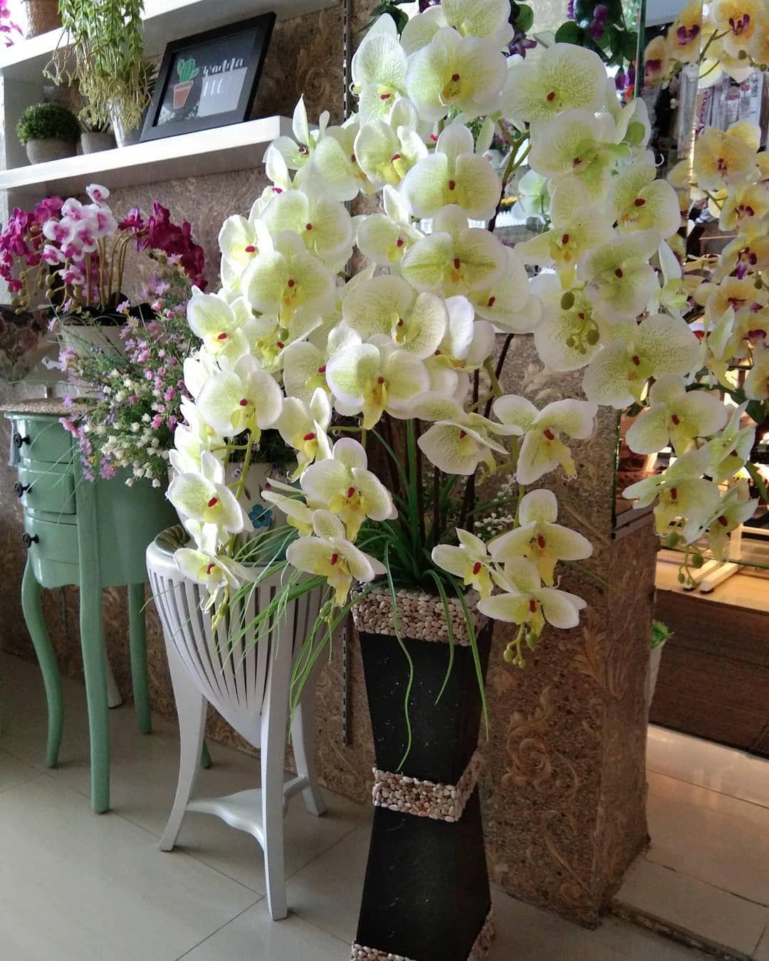 New The 10 Best Home Decor With Pictures Bismilah Bunga Anggrek Cantik Buat D Sudut Ruangan Y Moms Order Wa 0822 Home Decor Decor Decor Interior Design