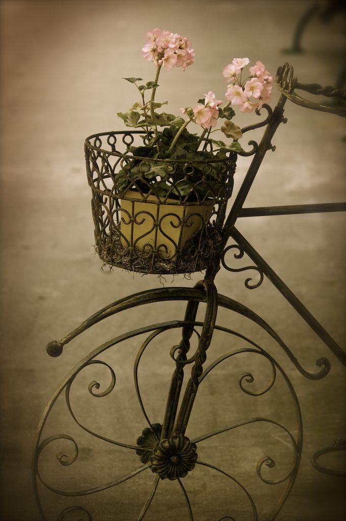Vintage bicycle with basket of spring flowers.