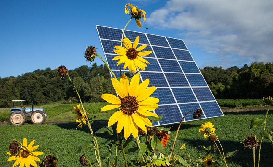 Southern Vermont Solar Solar Panels Solar Farm