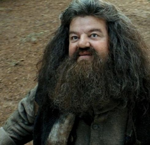 Robbie Coltrane Played Rubeus Hagrid In The Harry Potter Films In 2020 Harry Potter Actors Robbie Coltrane Harry Potter Films