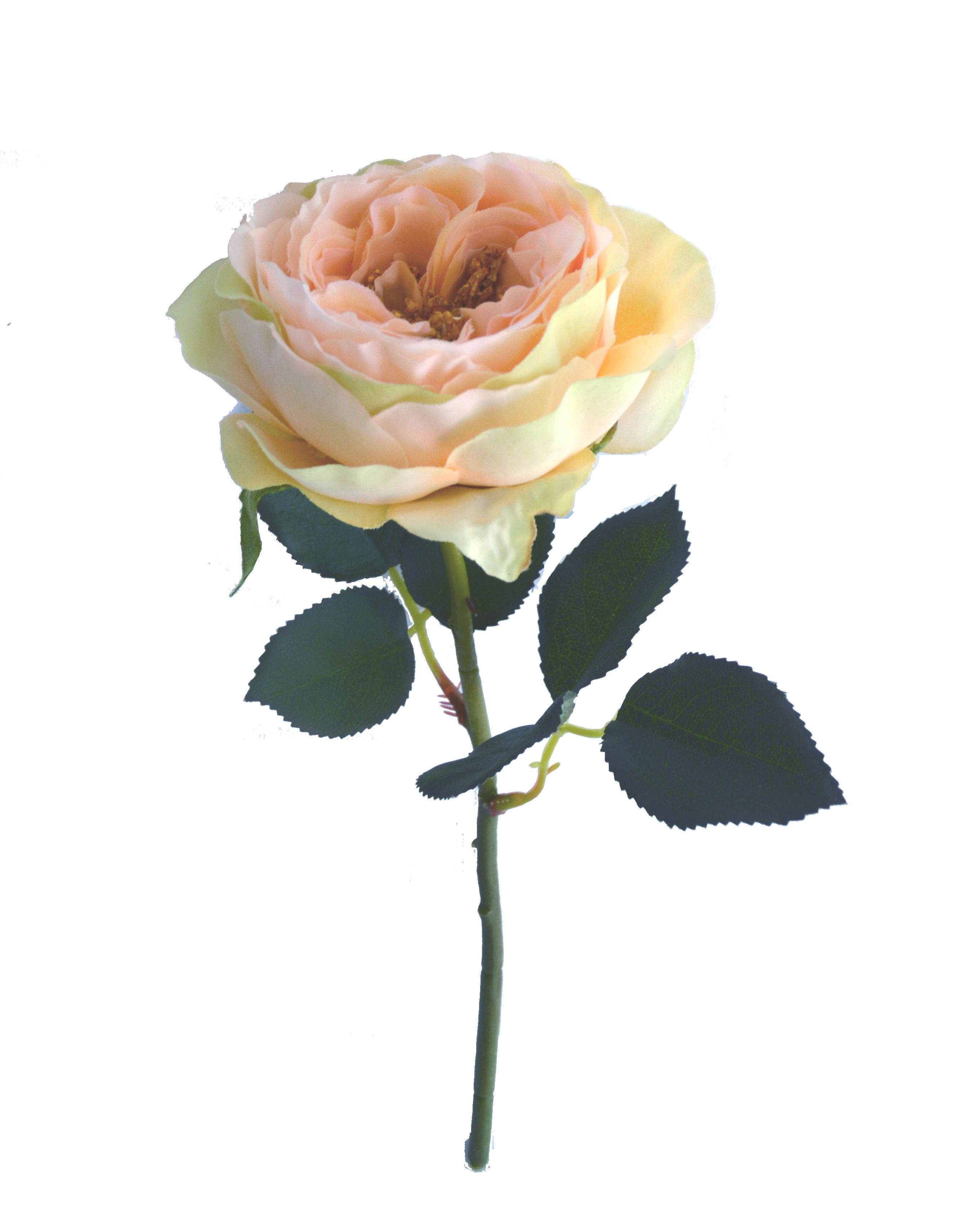 Cabbage Rose In Peach Faux Flowers Cheap Wedding Flowers
