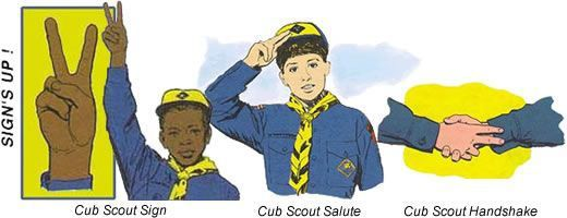 Image result for cub scout bobcat requirements