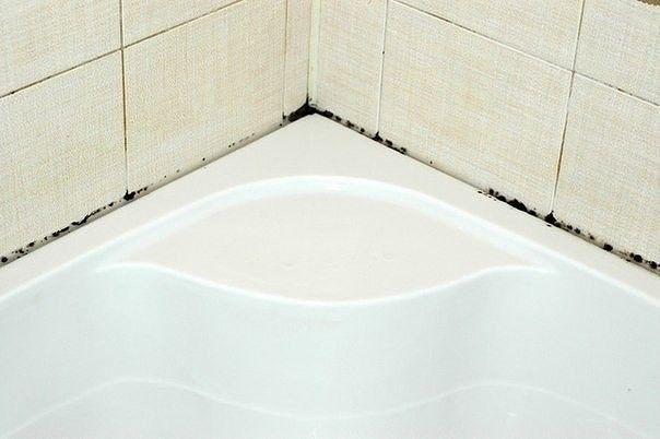 """Картинки по запросу """"Как избавиться от плесени в ванной и грязных швов между плиткой"""""""