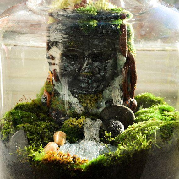 Large Terrarium DIY Terrarium Kit Buddha Living Moss - Amazing diy non living terrarium