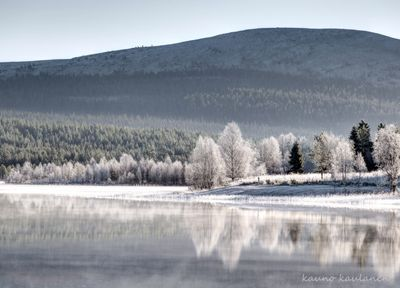 White morning in Lapland, Finland | yle.fi