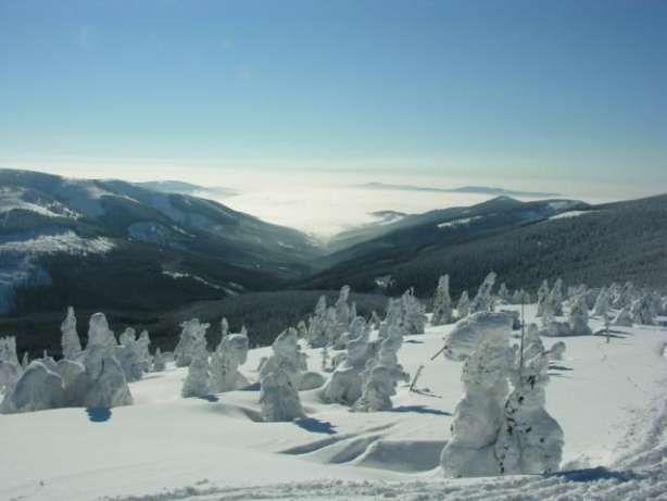 Domek Całoroczny okolica Czarnej Góry Działka 1650m2 Nowa Morawa - image 7