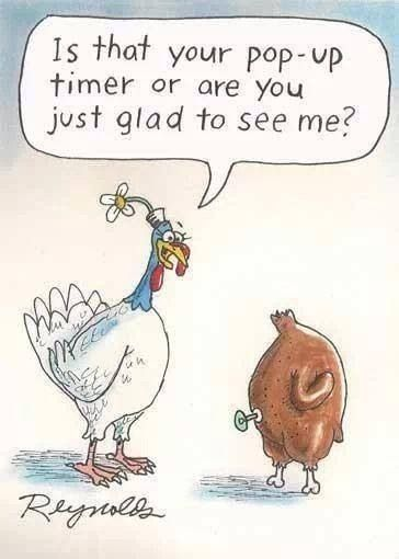 7062975d551ba98fffcf979b58952258 - Free funny thanksgiving photos