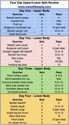 Body Part Split Workout Plan For Women Google Search