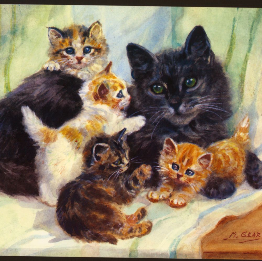 Mabel geart mother with playful kittenslarge birthday greeting cat mother with playful kittenslarge birthday greeting card kristyandbryce Gallery