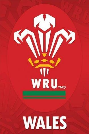 Plakat Sportowy Wales R U Crest Wru Reprezntacja Walli Rugby Nice Wall Welsh Rugby Wales Rugby England Rugby Union