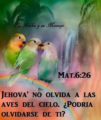 Somos Testigos De Jehová Community Google Pinturas De