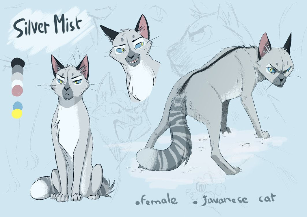 Silvermist Reference 2017 By Owlcoat Warrior Cats Fan Art Warrior Cats Art Warrior Cats Series